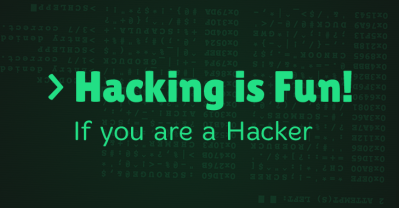 essay about computer hacking for beginners